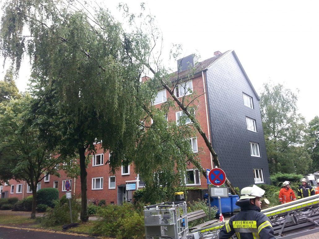 Sturmtief Paul beschäftige Feuerwehr Buchholz über mehrere Stunden