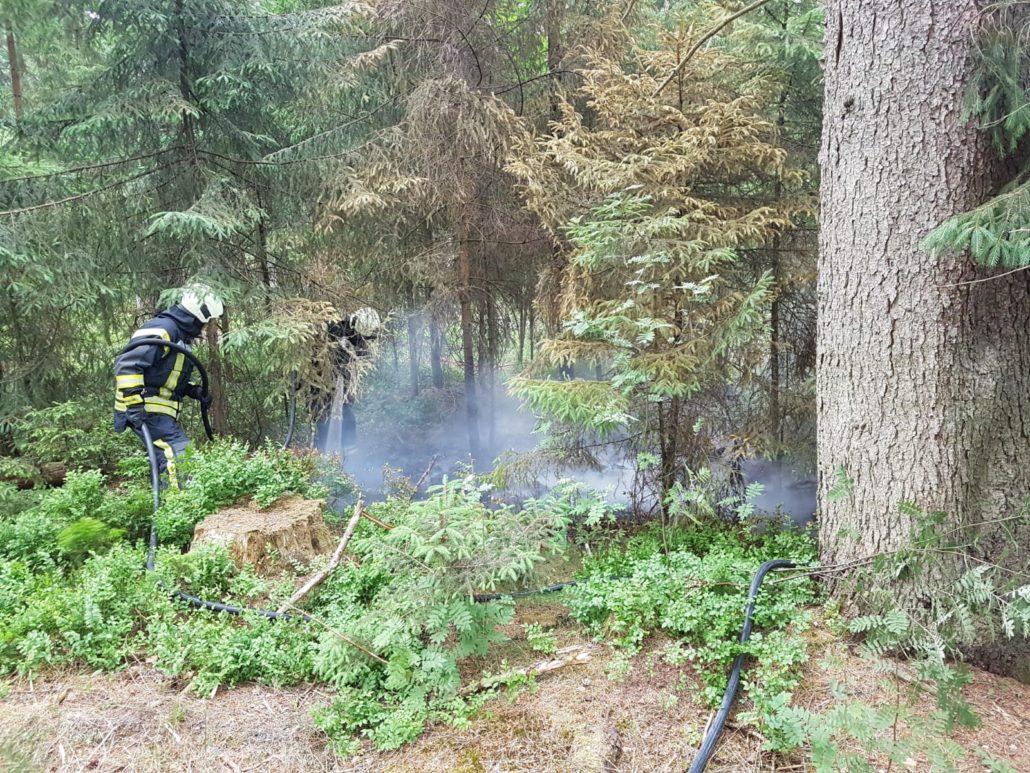 Weiterer Flächenbrand in Holm-Seppensen